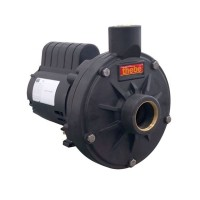 BOMBA THEBE TH-16 P 1,5 CV 127/220/254 MOTOR NOVA IP 21